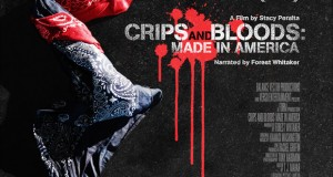 Crips and Bloods: Made in America : Image